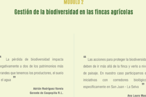 Web-Seminar on biodiversity in banana and pineapple cultivation