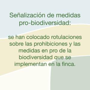 Medidas Plantac Finca Denia 02