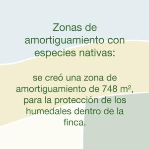 Medidas Plantac Finca Denia 03