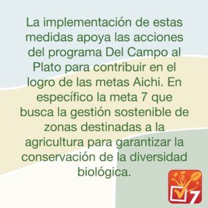 Medidas Plantac Finca Denia 07